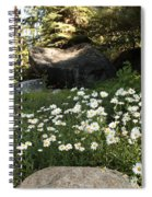 Field Of Daisies In Tahoe Spiral Notebook