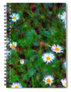 Field Of Daisys  Spiral Notebook