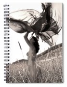 Field Of Dreams Spiral Notebook