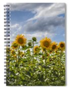 Field Of Dreams Panorama Spiral Notebook