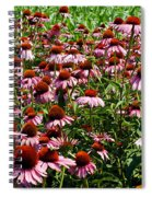Field Of Echinacea Spiral Notebook