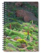Field Of Echium Wildpretii In The Teide National Park Spiral Notebook