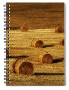 Field Of Gold #1 Spiral Notebook