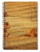Field Of Gold #3 Spiral Notebook