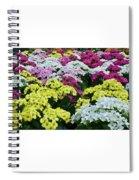 Field Of Kalanchoe Spiral Notebook