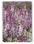 Field Of Multi-colored Flowers Spiral Notebook