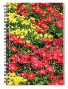 Field Of Red And Yellow Flowers Spiral Notebook