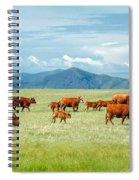 Field Of Reds Spiral Notebook