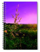 Field Rye And Ear Spiral Notebook