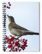 Fieldfare - 2 Spiral Notebook