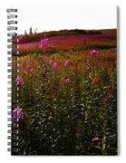 Fields In Pink Spiral Notebook