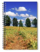 Fields Of Chopped Flowers At Nir Banim Spiral Notebook