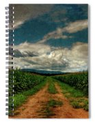 Fields Of Summer Spiral Notebook