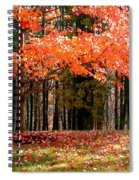 Fiery Leaves Spiral Notebook