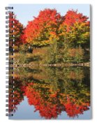 Fiery Reflections Spiral Notebook