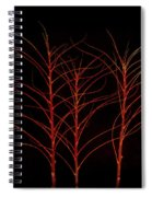 Fiery Trees Spiral Notebook