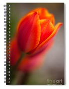 Fiery Tulip Spiral Notebook