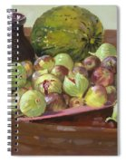Figs And Cantaloupe Spiral Notebook