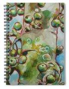 Figs3 Spiral Notebook