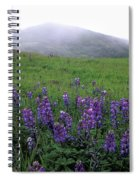 Figueroa Mountain With Fog Spiral Notebook