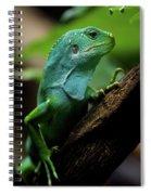Fiji Iguana In Profile On Tree Branch Spiral Notebook