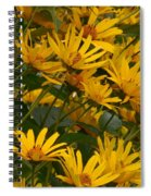 Filled With Sunflowers Horizontal Spiral Notebook