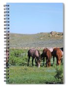Fillies Day Out Spiral Notebook