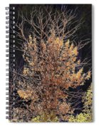 Final Fall Spiral Notebook