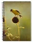 Finch 1 Spiral Notebook