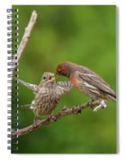 Finch Feeding Time I Spiral Notebook