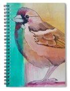 Finch Fun Spiral Notebook