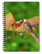 Finches In Motion I  Spiral Notebook