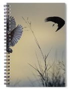 Finches Silhouette With Leaves 5 Spiral Notebook