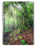 Finding Inspiration Spiral Notebook