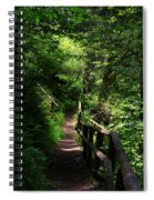 Finding The Right Path Spiral Notebook