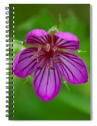 Finding Truth In Nature Spiral Notebook