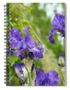 Fine Art Floral Prints Purple Iris Flowers Canvas Irises Baslee Troutman Spiral Notebook