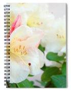 Fine Art Florals Prints White Pink Rhodies Rhododendrons Baslee Troutman Spiral Notebook