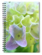 Fine Art Prints Hydrangeas Floral Nature Garden Baslee Troutman Spiral Notebook
