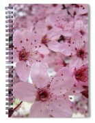 Fine Art Prints Spring Pink Blossoms Trees Canvas Baslee Troutman Spiral Notebook