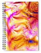 Fine Day Spiral Notebook