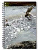 Fine Feathered Fisherman Spiral Notebook