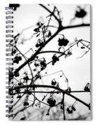Fineart-nature-4 Spiral Notebook