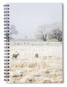 Fingal Winter Farmyard Spiral Notebook