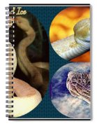 Fire And Ice Slither Collage Spiral Notebook