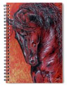Fire And Nobility Spiral Notebook