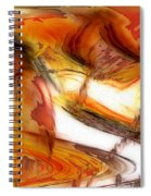 Fire And Rain Spiral Notebook