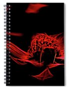Fire In Abstract Spiral Notebook