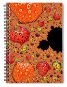 Fire Jubilation Spiral Notebook