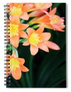 Fire Lily 2 Spiral Notebook